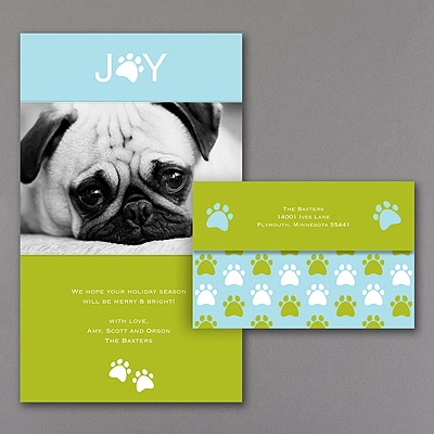 Paws for Joy - Seal 'n Send Photo Holiday Card