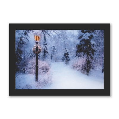 Beautiful Winter Path - American Cancer Society
