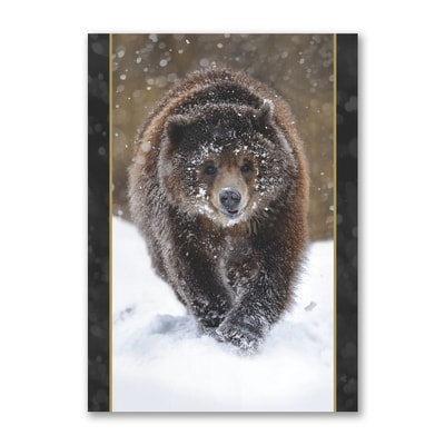 Dashing Through the Snow - National Wildlife Federation