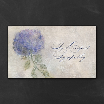 Hydrangea Sympathy