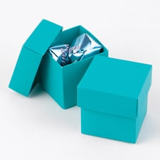 Two-Piece Favor Boxes - Palm - Blank