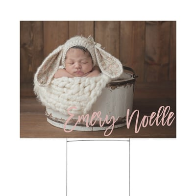 Announcing Baby Yard Sign